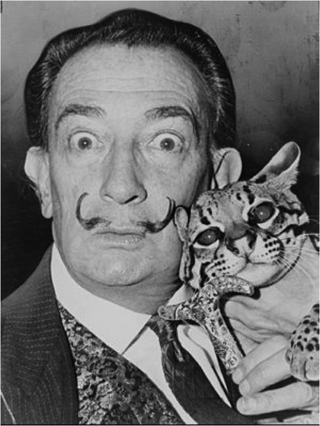 Salvador Dali et son chaton