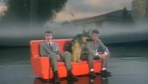 CHIENS 1 Pet Shop Boys