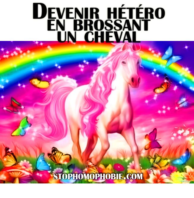 devenir-hetero-en-brossant-un-cheval-stop-homophobie