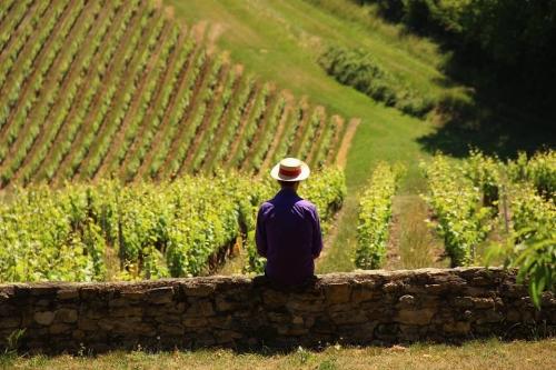 Bourgogne 1