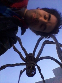Araignée Bilbao 2