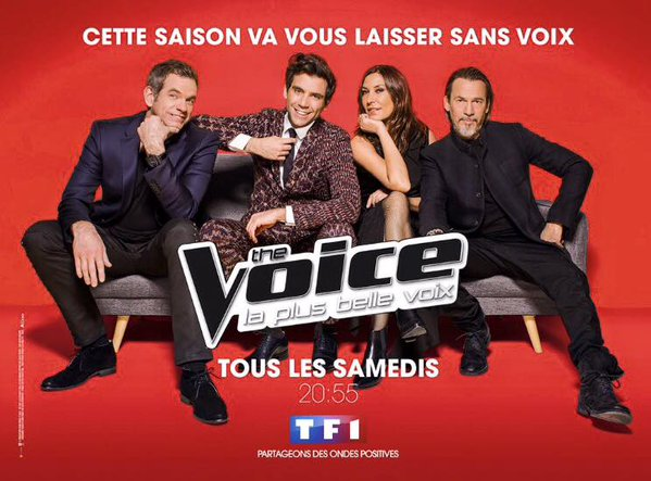 The Voice Sans Voix